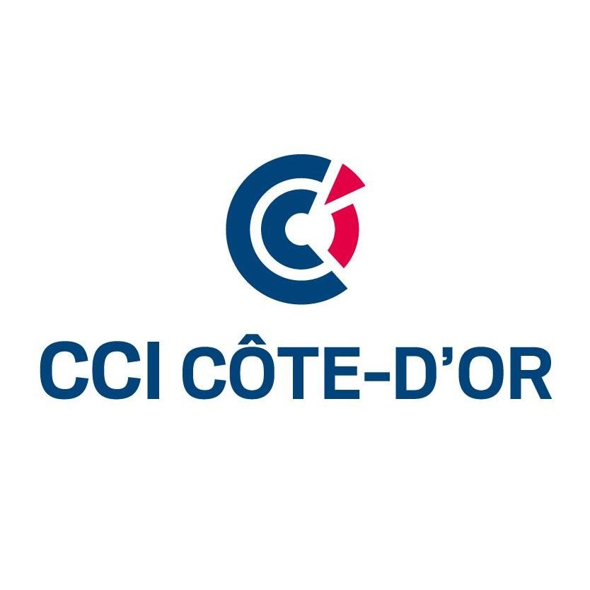 Logo-cci21