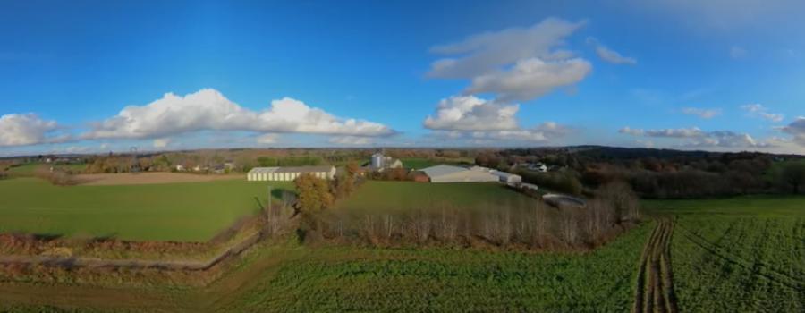 un élevage du ciel du Cochon de Bretagne