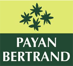 Entreprise digitale logo payan bertrand